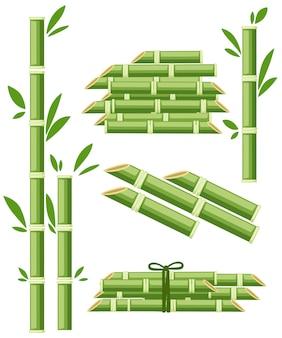 Colture agricole di piante da zucchero