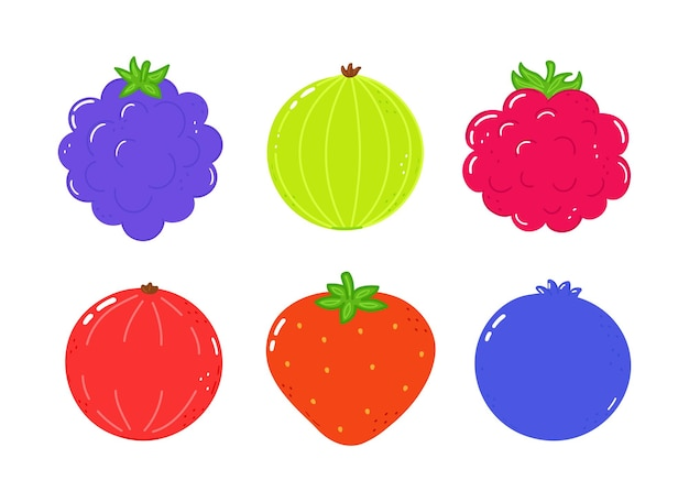 Estate ai frutti di bosco mirtillo lamponi uva spina mora fragola ribes rosso con foglie