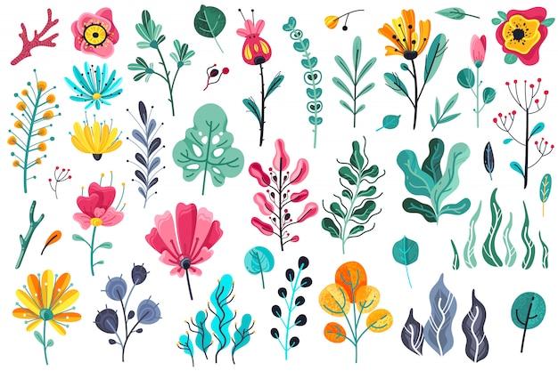Fiori estivi piatti. materiale botanico, icone del materiale illustrativo floreale di anniversario di primavera della bellezza di bellezza della pianta della fioritura della pianta del fiore floreale del giardino