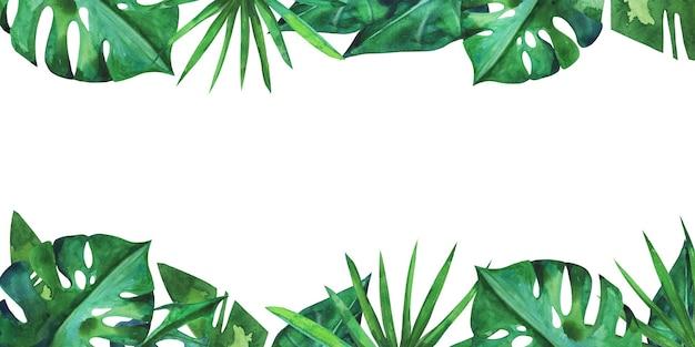 Cornice estiva con foglie verdi tropicali disegnate a mano in acquerello