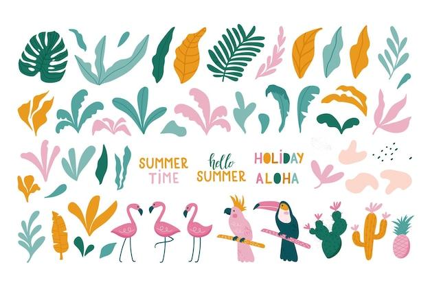Insieme estivo di elementi di design foglie tropicali, fenicotteri, tucano, pappagallo.