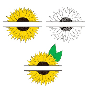Cornice di girasole per il tuo testo imposta i girasoli illustrazione vettoriale in stile piatto oggetti isolati