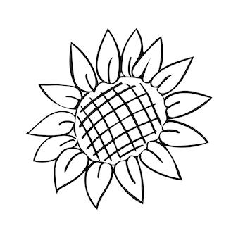Vettore di doodle disegnato a mano di girasole Vettore Premium