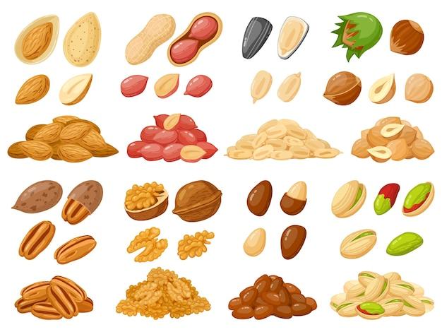Illustrazione di semi di girasole e pistacchio