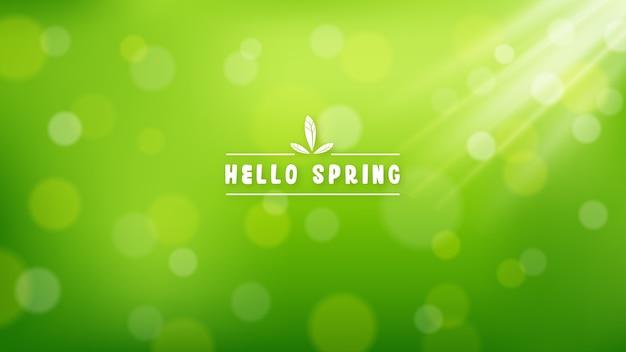 Sfondo verde soleggiato con effetto bokeh