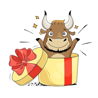 Confezione regalo a sorpresa con toro cool