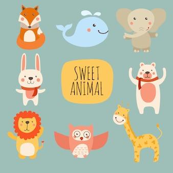 Collezione sweet animal