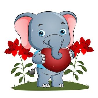Il dolce elefante tiene in mano un grande cuore con la faccia felice per l'illustrazione di san valentino