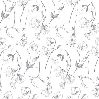 Motivo floreale lineare di pisello dolce in fantasia grigia e bianca