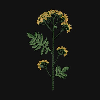 Tanaceto ricamato con fili gialli e verdi su sfondo nero. bellissimo ricamo con fiori selvatici in fiore o erbe fiorite di prato. ricamo o lavoro fatto a mano. illustrazione vettoriale.