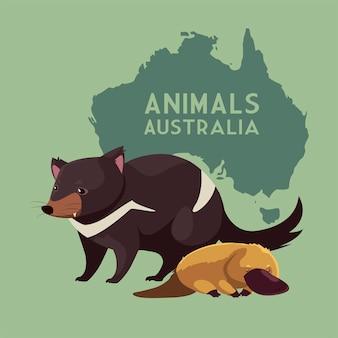 Diavolo della tasmania e ornitorinco continente australiano mappa animale illustrazione della fauna selvatica