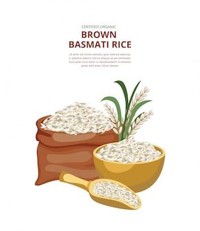 Modello per il pacchetto del riso sbramato con il cereale del riso, illustrazione piana di vettore.