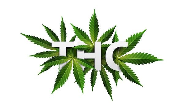 Thc. titolo 3d decorato con foglie di cannabis