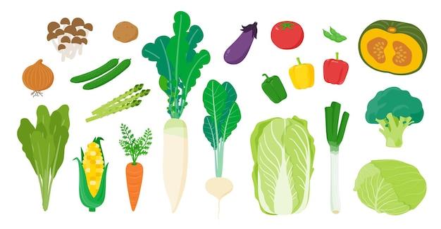 Ci sono molte verdure. arte facile da modificare.