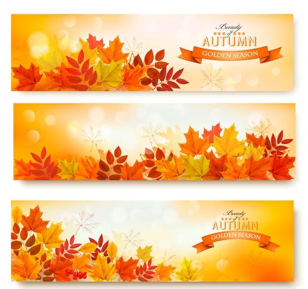 Tre insegne astratte di autunno con le foglie variopinte