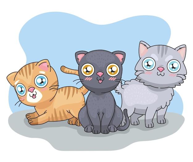 Cartoni animati di tre gatti