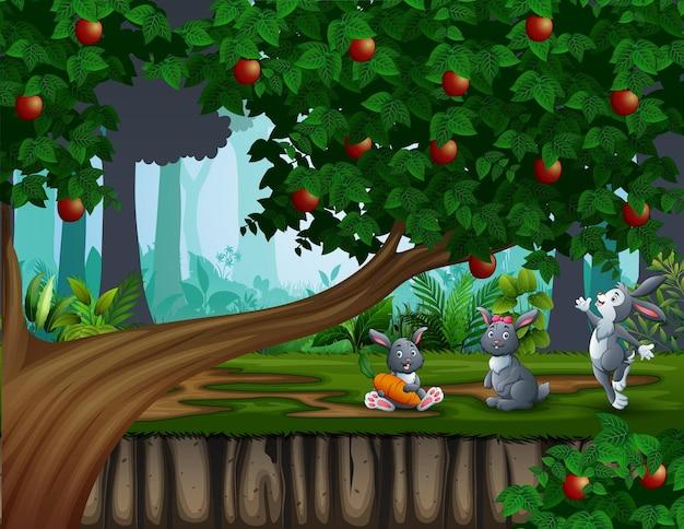Tre simpatici coniglietti che giocano sullo sfondo della foresta