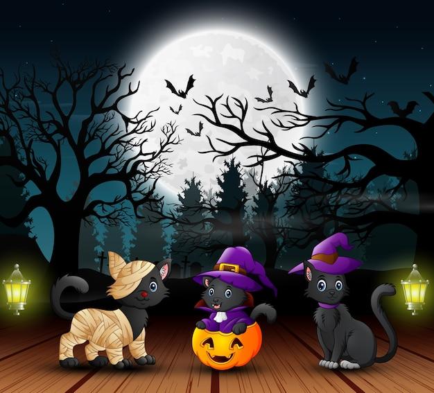 Tre simpatici gatti durante le feste notturne di halloween