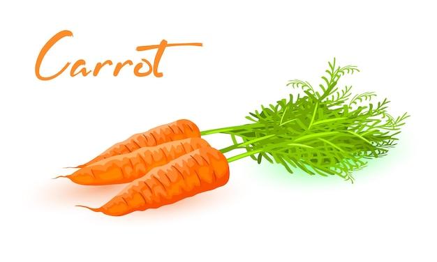 Tre carote fresche con foglie