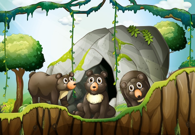 Tre orsetti vicino alla grotta