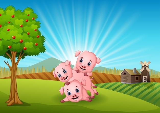 Tre porcellini che giocano nella fattoria