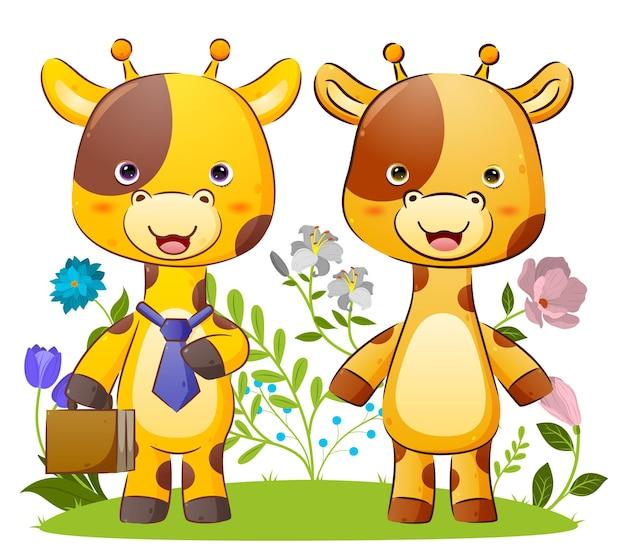 La coppia ordinata di giraffe è pronta per andare in ufficio insieme illustrazione