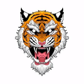 Testa di tigre con sfondo bianco