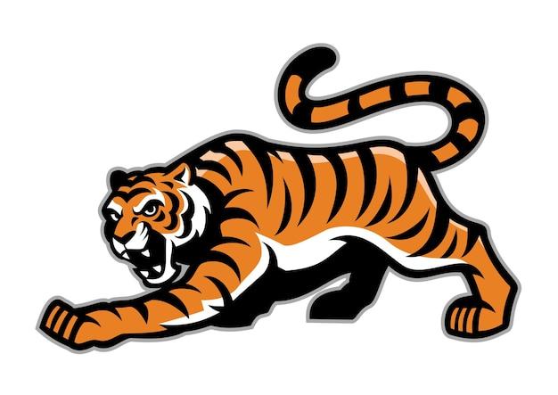 Mascotte della tigre che si accovaccia isolato su bianco