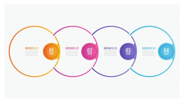 Timeline infografica design sottile linea cerchio elementi e numeri opzioni. concetto di business con 4 passaggi.
