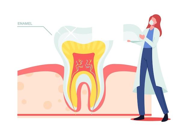 Piccolo dentista dottoressa personaggio in maschera e veste bianca mettere parte di smalto su un dente enorme vista in sezione trasversale infografica