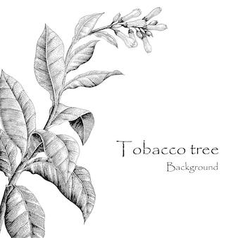 Mano dell'albero di tabacco che disegna stile d'annata, fondo dell'albero di tabacco