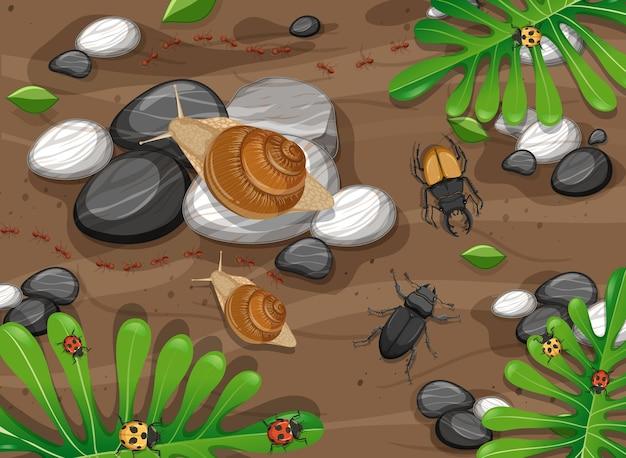 Vista dall'alto di diversi tipi di insetti in giardino