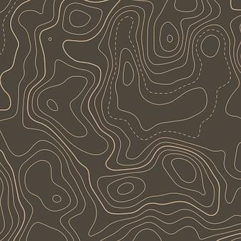 Sfondo di elevazione della mappa del contorno topografico