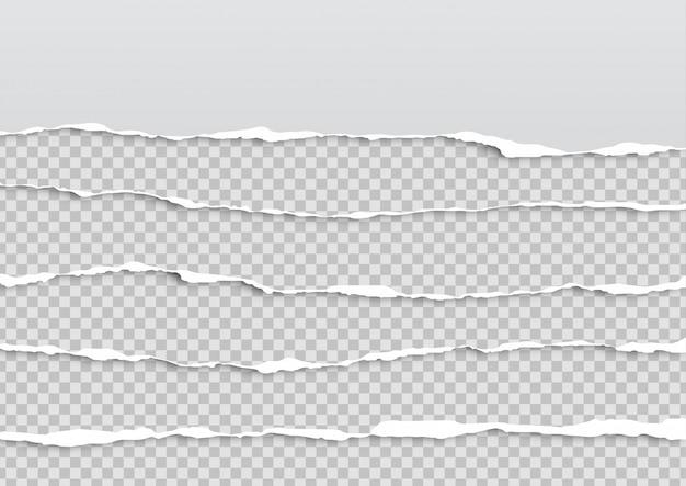 Set di fogli di carta strappata
