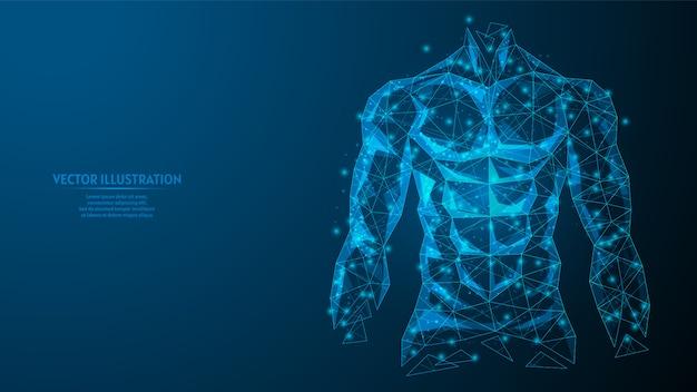Torso di un primo piano di uomo. corpo muscoloso atletico gonfiato. il concetto di sport, alimentazione sana, stile di vita sano. illustrazione di modello poli wireframe basso 3d.