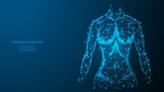 Torso di un primo piano di donna. corpo muscoloso atletico forte. il concetto di sport, alimentazione sana, stile di vita sano. illustrazione di modello poli wireframe basso 3d.