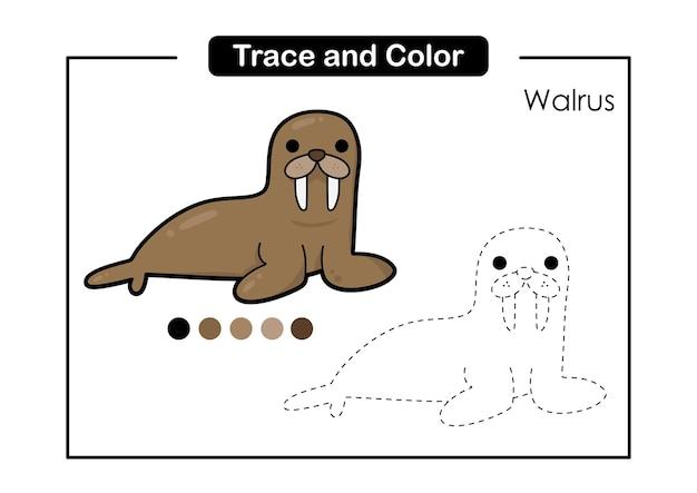 Traccia e colora il gioco per bambini con simpatici animali marini walrus