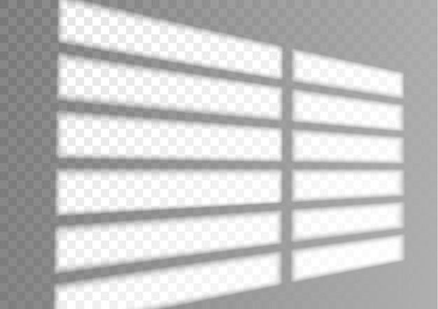 Ombreggiatura trasparente della finestra e delle persiane effetto di luce realistico