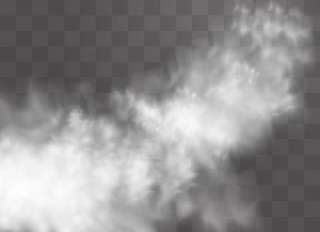 L'effetto speciale trasparente si distingue per nebbia o fumo. nuvola bianca, nebbia o smog.