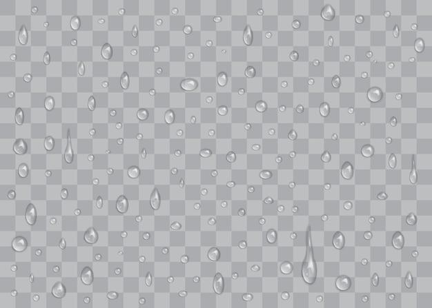 Gocce d'acqua trasparenti isolate su sfondo trasparente