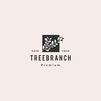 Retro d'annata dei pantaloni a vita bassa di logo della foglia del ramo di albero