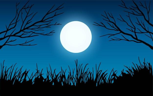 Rami di alberi ed erba al chiaro di luna