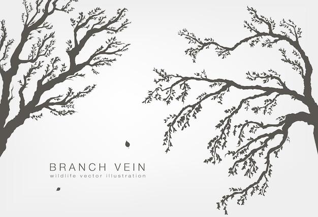 Rami di albero con foglie e legno su sfondo bianco.