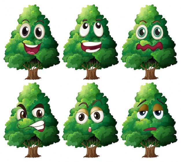 Espressione dell'albero