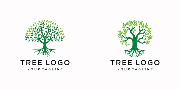 Albero. modello di logo giardino verde
