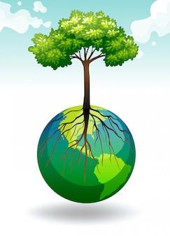 Albero che cresce sulla terra