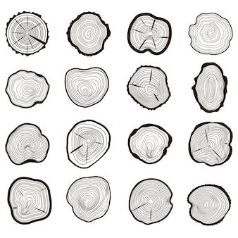 Gli anelli degli alberi hanno visto il tronco tagliato con crepe e struttura in legno di linee nere