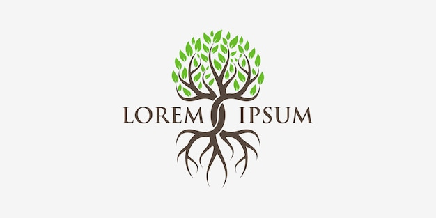 Logo albero e radici. giardino verde