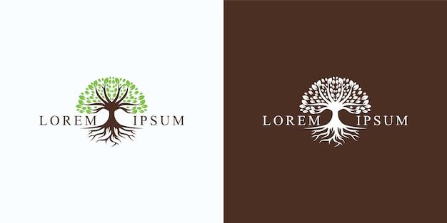 Logo di albero e radici. giardino verde