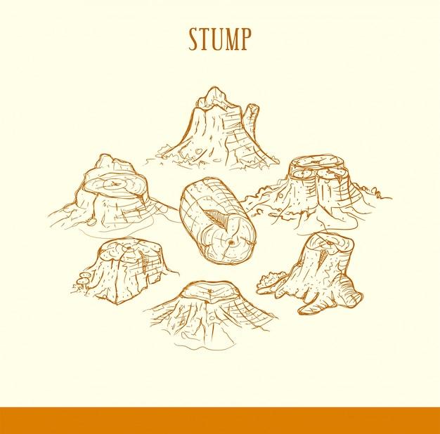 Stile disegnato a mano di ceppo di albero